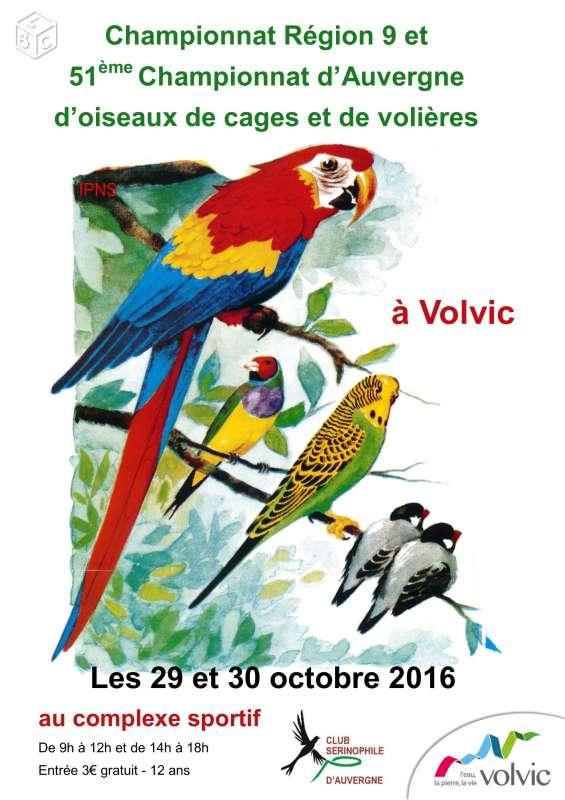 Concours/Expo d'oiseaux de cages et de volières