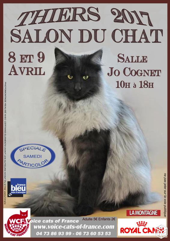 Salon du chat