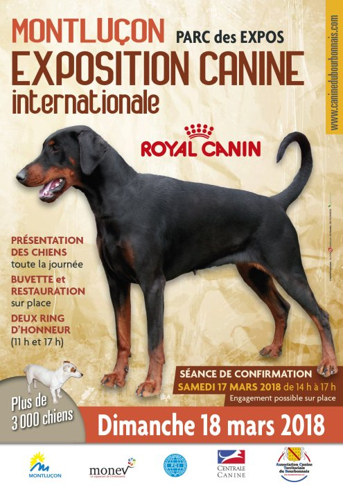 Exposition Canine Internationale de Montluçon